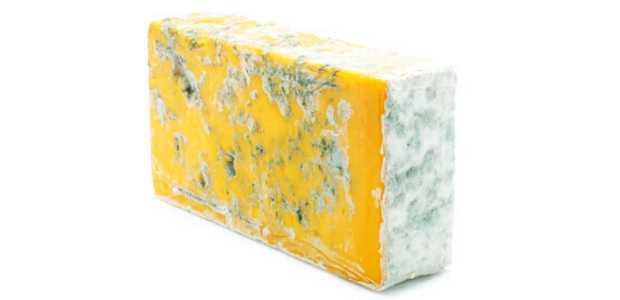 Gul ost med mugg utenpå