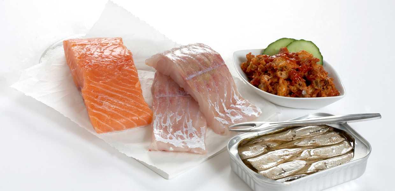 Rå laks og to stykker hvit fisk på en fjøl. En skål med makrell i tomat og en boks med sardiner.