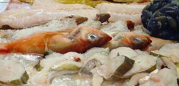 Ulike fisketyper ligger i en fiskedisk