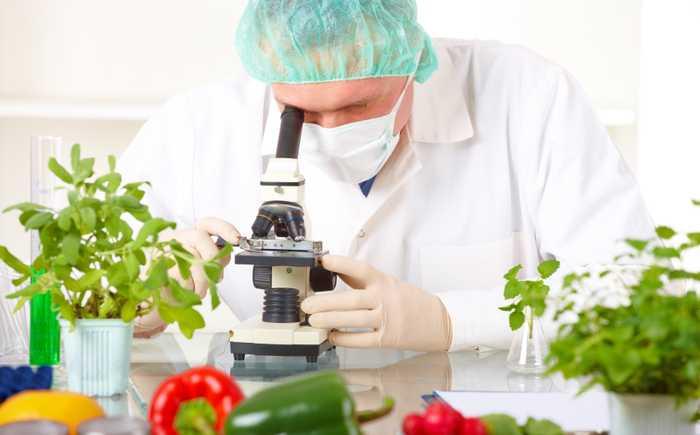 Forsker som undersøker frukt og grønnsaker i et mikroskop