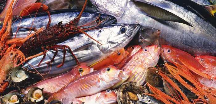 Eksotiske fiskeslag, kreps, hummer og skjell