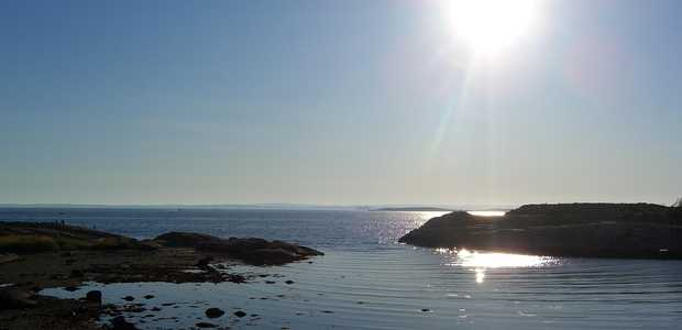 Utsikt fra fjærekant ut mot havet