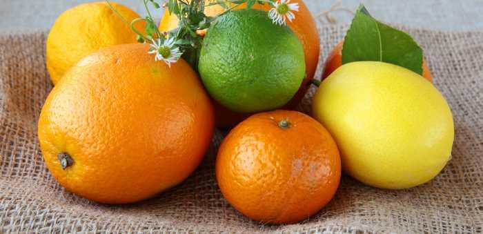 appelsin lime klemmentin sitron sitrus sitrusfrukt