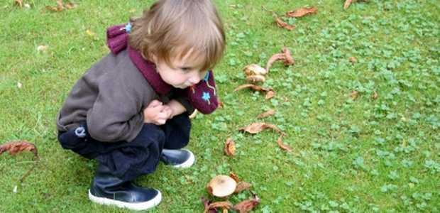 Barn som ser på sopp på en gressplen