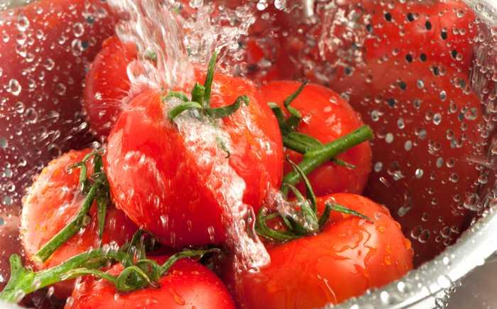Tomater som blir skyllt