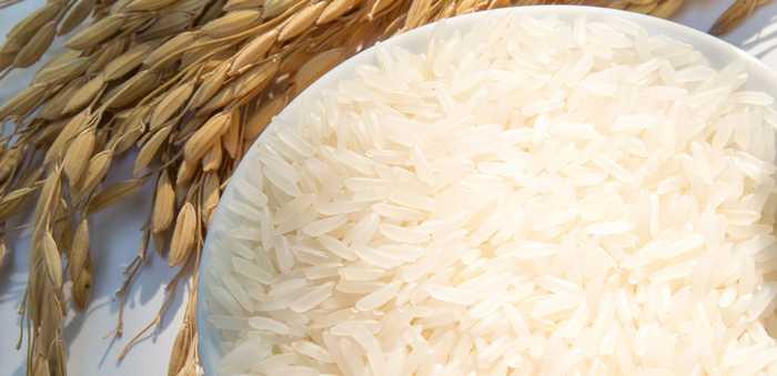 Ris og risplante i bakgrunn
