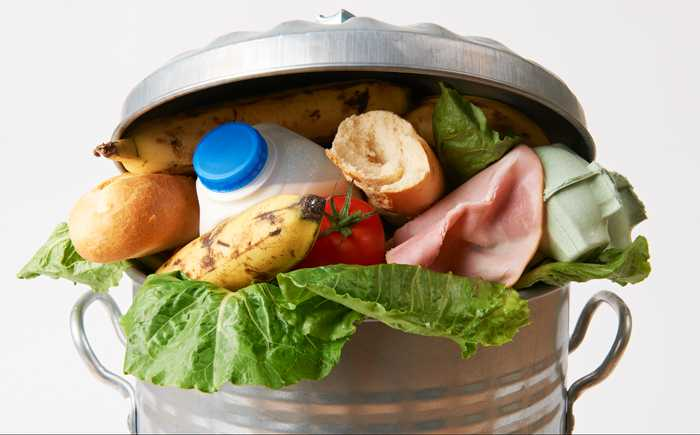 Mat i søpplekasse