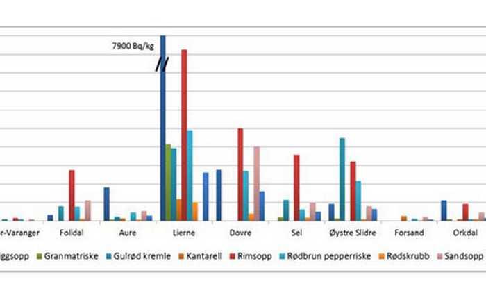 Tabell med oversikt over radioaktivitet i ulike typer sopp.